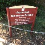 Monkey Exhibit Sign