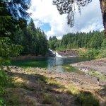 Elk Falls Provincial Park Foto