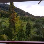 Foto di Krabi Thai Village Resort