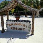 Billede af VOI Dhiggiri Resort
