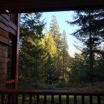 Foto de Center Parcs Longleat Forest