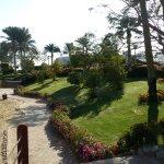 Photo de Renaissance Sharm El Sheikh Golden View Beach Resort