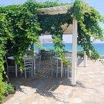 Photo of Ostria Inn