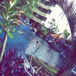 Snapchat-184932438_large.jpg