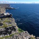 The cliff edge at Dun Aonghus