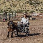 Foto de D.D. Gamble Guest Lodge and Ranch