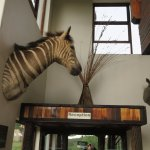 Harmony Game Lodge Picture