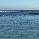 The lagoon & the Caribbean Sea.