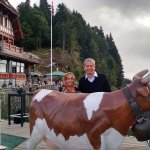 A statue of famous Swiss Cow on the hanging Overbridge at Harder Kulm
