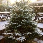Christmas at The Masham