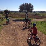 Tour by Bike