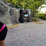 Marriott's Aruba Ocean Club Foto
