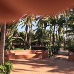 Foto de Los Tules Resort