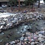 Photo de Inn on Fall River