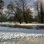 Foto de Vondelpark