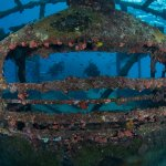 The Bajan Queen is just one of the many wrecks to explore on island.