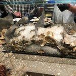 Hog Island Oyster Companyの写真