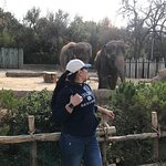 Photo of Fort Worth Zoo