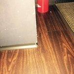 Rug & floor had not been cleaned in recent past.