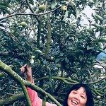 Batu Eco Green Park Fun & Study Photo