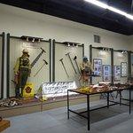 Wild Fires Exhibit
