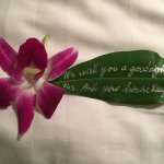 Lovely note from housekeeping
