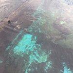 Foto de Underwater Observatory Marine Park