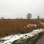 Photo of UNESCO World Heritage Kinderdijk