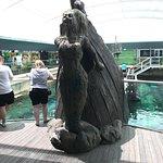 Sea Life Sydney Aquarium Foto