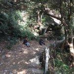 Triund Hill