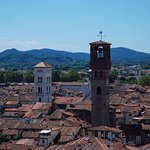 A view of the city of Lucca
