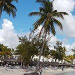 Photo of Ambre Mauritius