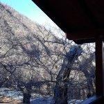 Campeggio Parco dei Castagni Fotografie