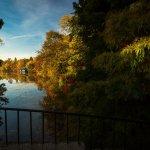 Foto de Herastrau Park
