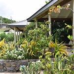 Bild från Volivoli Beach Resort Fiji