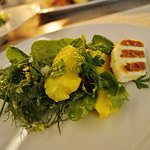 Fresh green salad with avocado and grilled manouri cheese