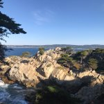 Foto de Point Lobos State Reserve