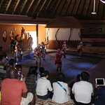 A taste of Local Africa Tradition - Lesedi Cultural Village Half Day Tour