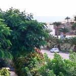 Photo of Sol Jandia Mar Apartamentos