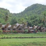 A typical Toraja Village