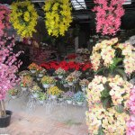 Orchids and ornamental flower stands.