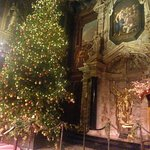 Tree in the Chapel