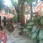 Photo de Hotel Casa de las Flores Playa del Carmen