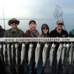 Spring Coho salmon