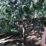 Foto de Sandos Caracol Eco Resort