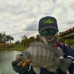 Peixes do Vó Bina no fly fishing