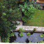 Down into garden below