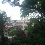 View of Hotel from Fort Canning Park