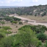 Tarangire Safari Lodge - view from just outside my tent down to the river