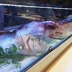Les poissons et crustacés en vitrine